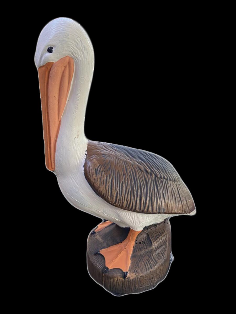 CMC Pelican