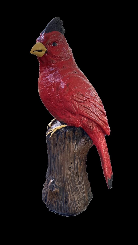 Sm. Detailed Cardinal