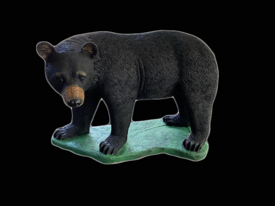 Real Bear Walking