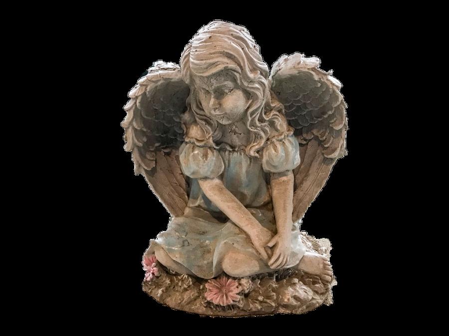 Daisy Angel