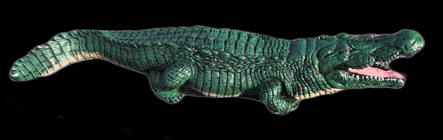 Alligator LG.