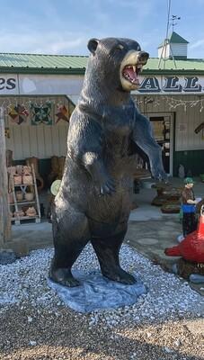 8' Bear Aluminum