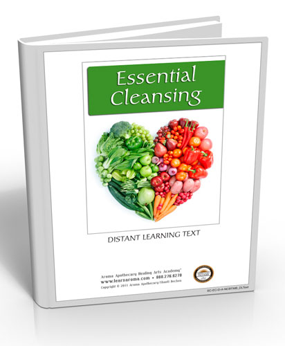 Essential Cleansing, 6 hours (Digital Course)