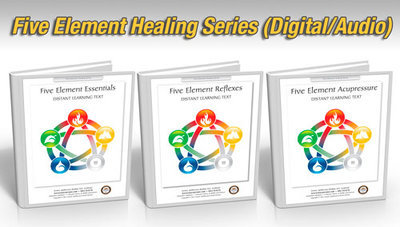 Five Element Healing Package, 18 hours (Digital Courses)