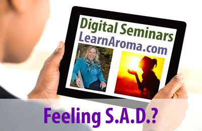 Digital Seminar: Feeling S.A.D.?: Tools for Vitality Enhancement, 2 hours