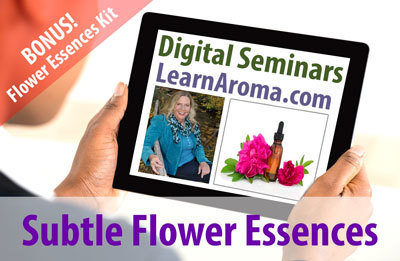 Digital Seminar: Subtle Flower Essence Package  (2 hours + flower essence kit)