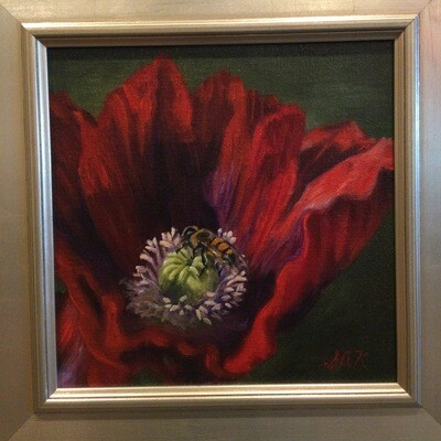 Red Poppy and Bee 8x8 Oil On Linen by Sonja A Kever