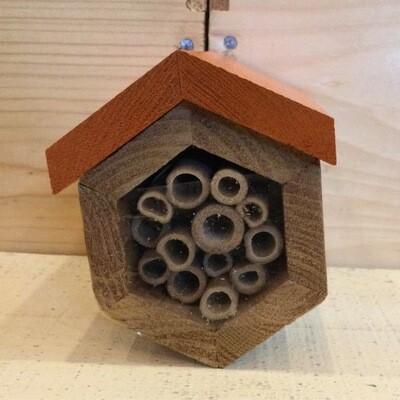 Hexagon Native Bee House