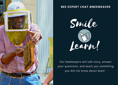 Bee Expert Chat