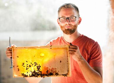 Bee Experience