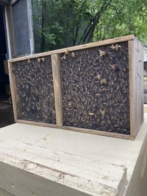 2021 BeeWeaver Package