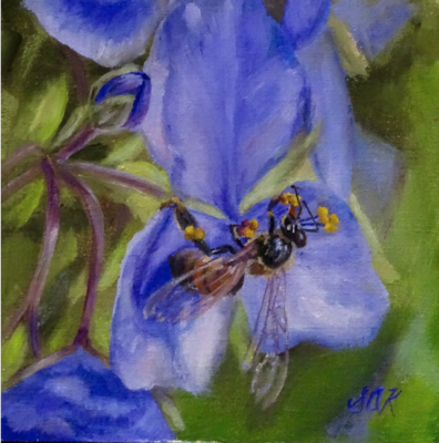 'Bee's Knees' 6x6 Oil on Linen by Sonja A Kever