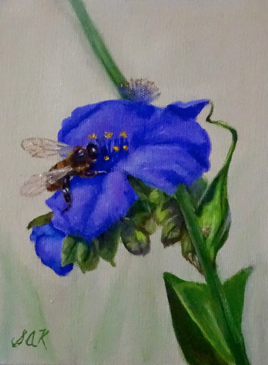 'Bee Kind' 8x6 Oil on Linen by Sonja A Kever
