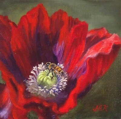'Red Poppy and Bee' 8x8 Oil On Linen by Sonja A Kever
