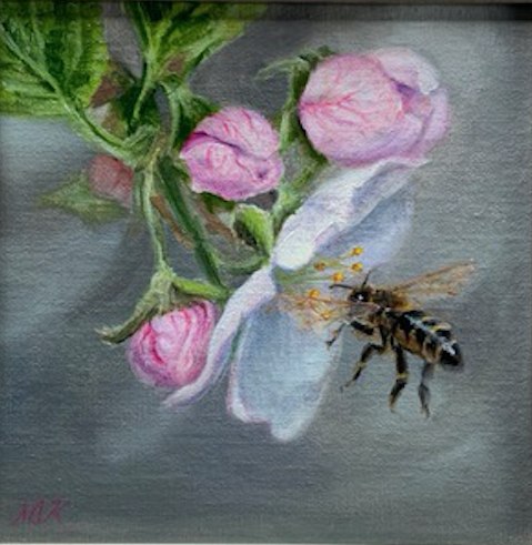 First Bloom 8x8 Oil On Linen by Sonja A Kever
