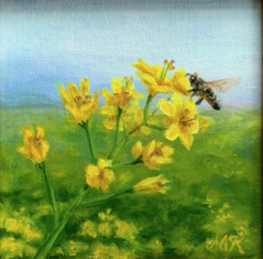 'Summer Field' 6x6 Oil on Linen by Sonja A Kever