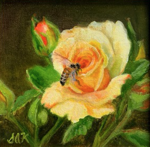 'Texas Yellow Rose' 6x6 Oil on Linen by Sonja A Kever