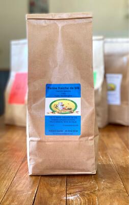Farine de blé boulangère