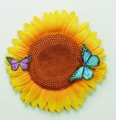 Stepping Stone Sunflower