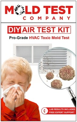 DIY Mold Test Kit