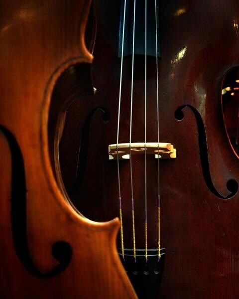 Bass Rental