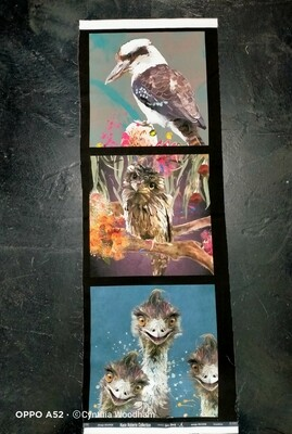 Australian Bird Panel