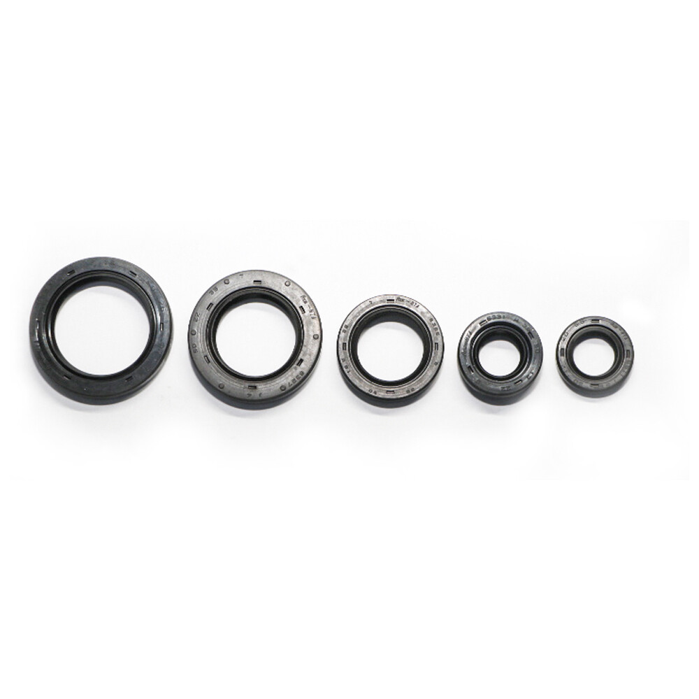 ENGINE OIL SEAL KIT - DISCOVER 135
