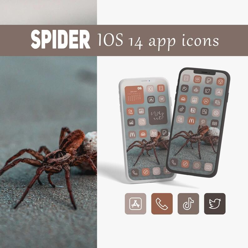 Spider app icons
