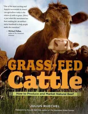 Grass-fed Cattle