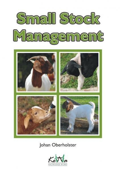 Small Stock Management