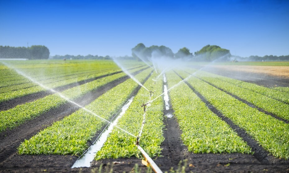 Irrigation - Online course