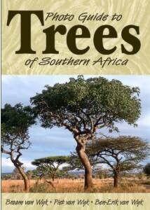 Trees of SA
