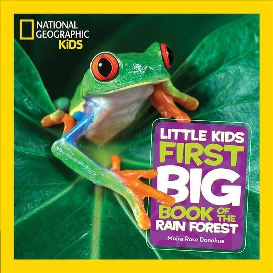 First Big Book on the Rain Forest