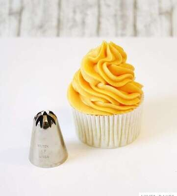 1F Large Size Stainless Steel Piping Cake Nozzles