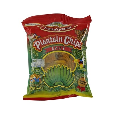 Tropical Gourmet Plantain Chips Spicy 20 x 85 g