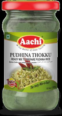 Aachi Pudina Rice Paste 24 x 300 g