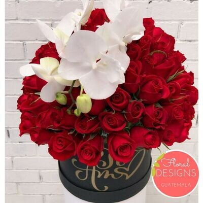 Luxury Box + Orquídea