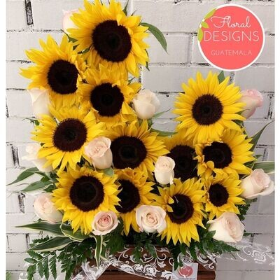 Sunny + rosas