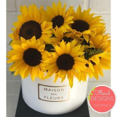 Caja Maison Des Fleurs de Girasoles