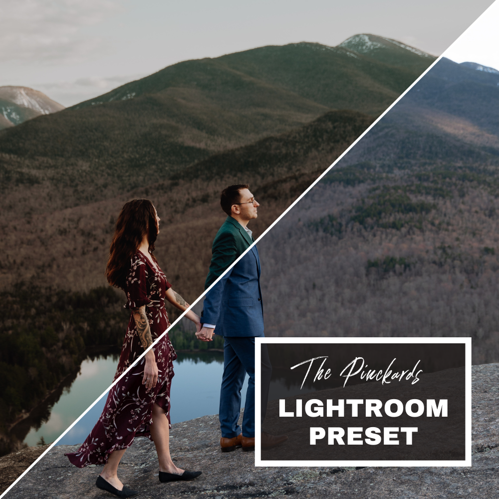 The Pinckards Presets ($50 off normal price)