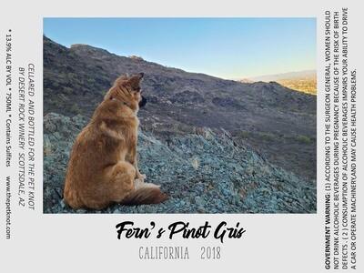 Fern's Pinot Gris