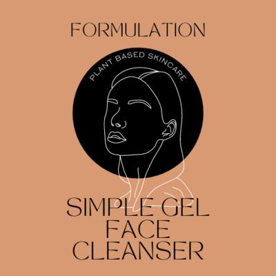 FORMULATION: GEL CLEANSER