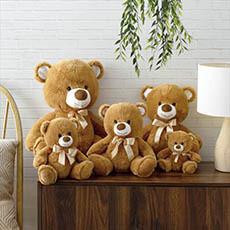 Teddy Bears - Brown