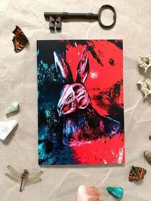 Death's Head Moth Entomology Notebook