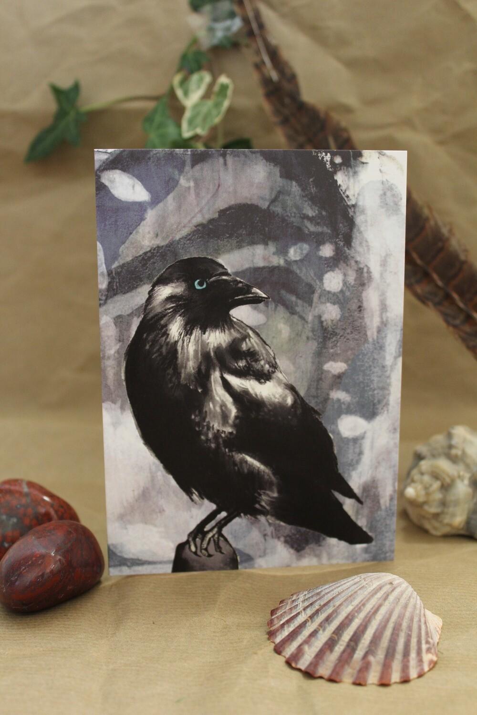 Jackdaw Greetings Card - Dark