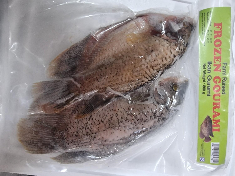 Ikan gurame halal