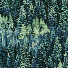 16911 Natures Window forest Evening $32 per mt
