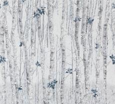16915 Natures Window Birch Winter $32 per mt
