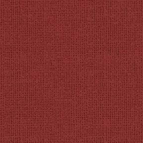 14603 Wigglebutts Red Tonal $28 per mt