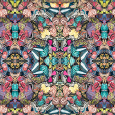 15456 Chrysalis Lepidoptera Prism $30 per mt